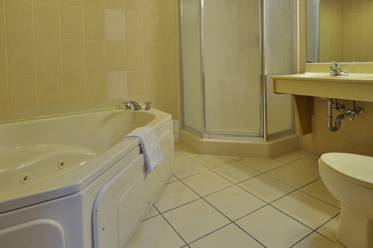 bathroom with jacuzzi tub and walk-in shower