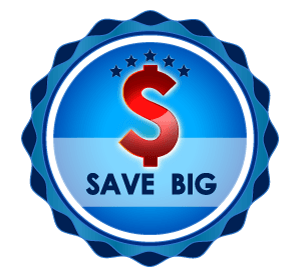 save big dollar sign